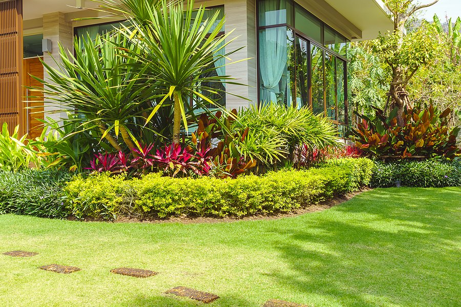 green scenery of landscaping